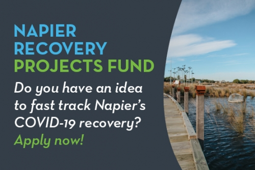 Napier Recovery Fund Web Tile v1.0 June 20