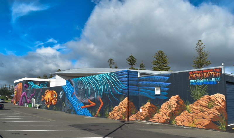 Sea Walls Murals for Oceans Napier City Council