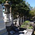 Graves in the Old Napier Cemetery.