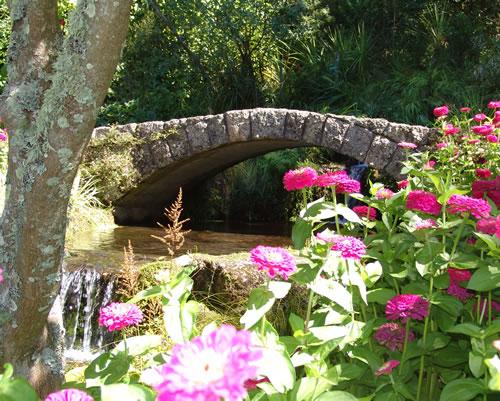 Botanical Gardens Napier City Council