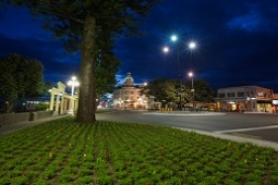 Napier by night small