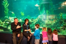 Regan and Nicola Aquarium tour small4