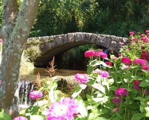 New Zealand Botanical Gardens